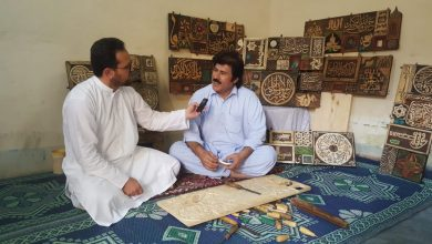 Establishment of display centre for wood art in Swat sought.