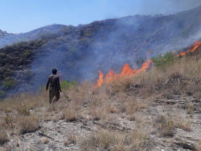 wild fire engulfs mountain near Takht-e-Bhai ruins