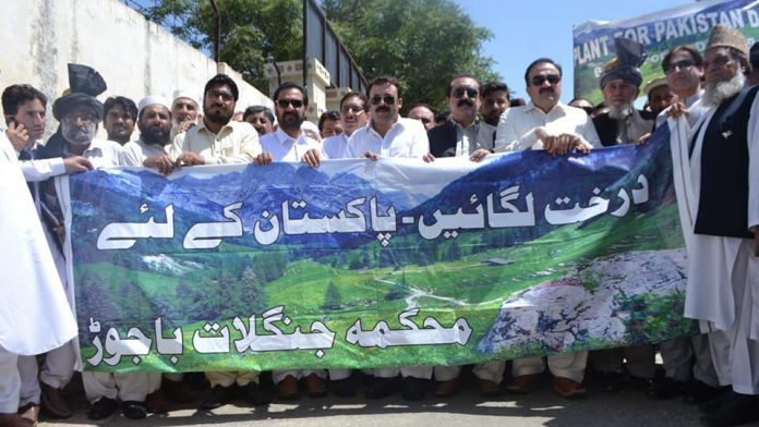 '200,000 saplings planted in Bajaur district'